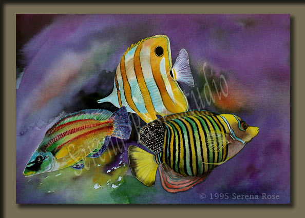 Harmony By Serena Rose A Beautiful Image Of Brightly