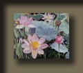 The Lotus Garden is an oil painting from the artist's watergarden series.